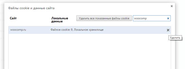 Удаление куков отдельного сайта в Google Chrome